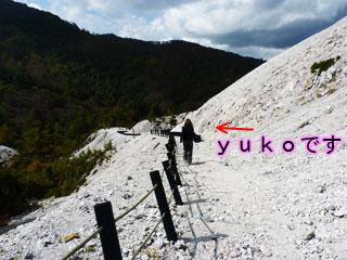 Kouyou11