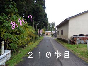P1050770_2